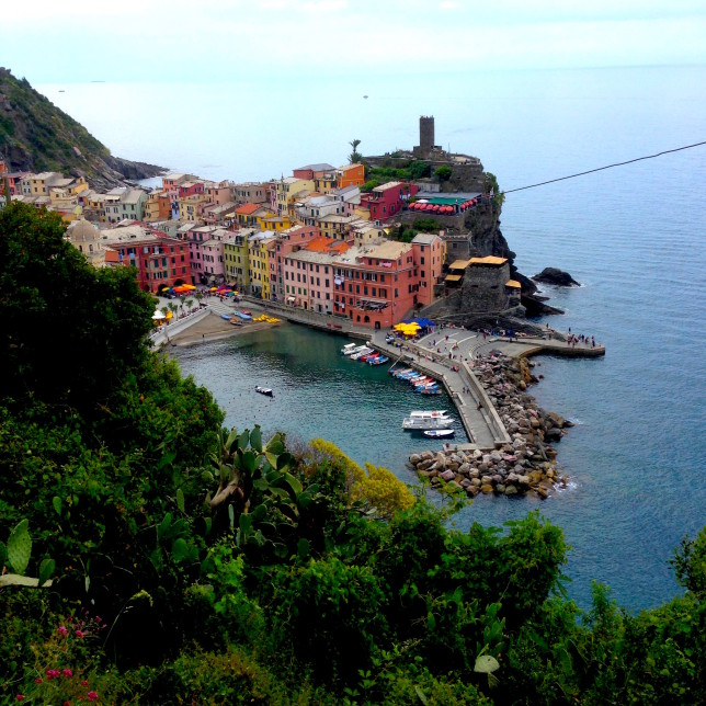 Vernazza's harbor is nice