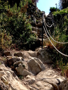 Cool uphill path with ropes