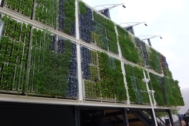 The other exterior wall of the US pavilion was a very cool vertical garden, food wall