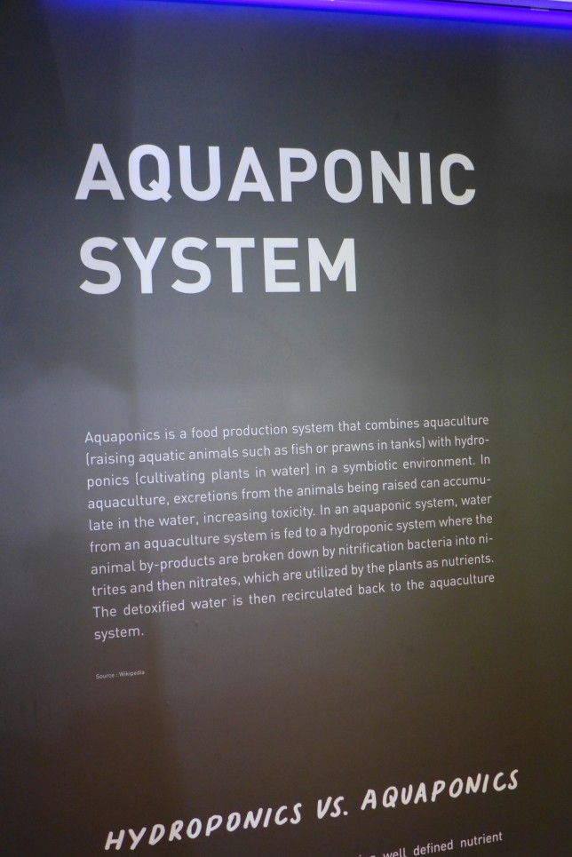 Information on the aquaponic system